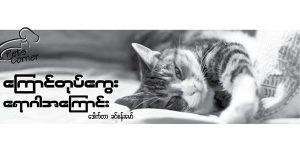 cat-flu
