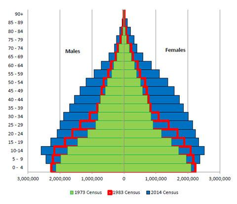 Population-Pyramid