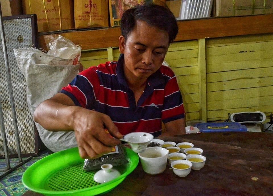 ဇြန္လလယ္ပိုင္းက လက္ဘက္ရည္ၾကမ္း အရည္အေသြး အမ်ဳိးမ်ဳိးရိွပံုကို ျပသေနေသာ ပင္ေလာင္း လက္ဖက္ အစုအဖြဲ႔မွ အတြင္းေရးမွဴး ကိုစုိင္းေကာင္ခမ္း (ဓာတ္ပံု - ေအာင္ၿငိမ္းခ်မ္း / Myanmar Now)