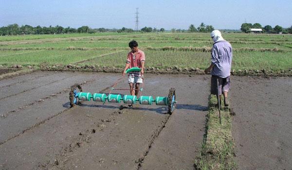 နေပြည်တော်တွင် ယခုနှစ် မိုးစပါး စိုက်ပျိုးစရိတ်ချေးငွေကျပ်သန်း ၁၆၀၅ ဒသမ ၉ သန်း ထုတ်ချေးပေးထားပြီး ရာခိုင်နှုန်းအားဖြင့် ၈ ရာခိုင်နှုန်းသာ ရှိ